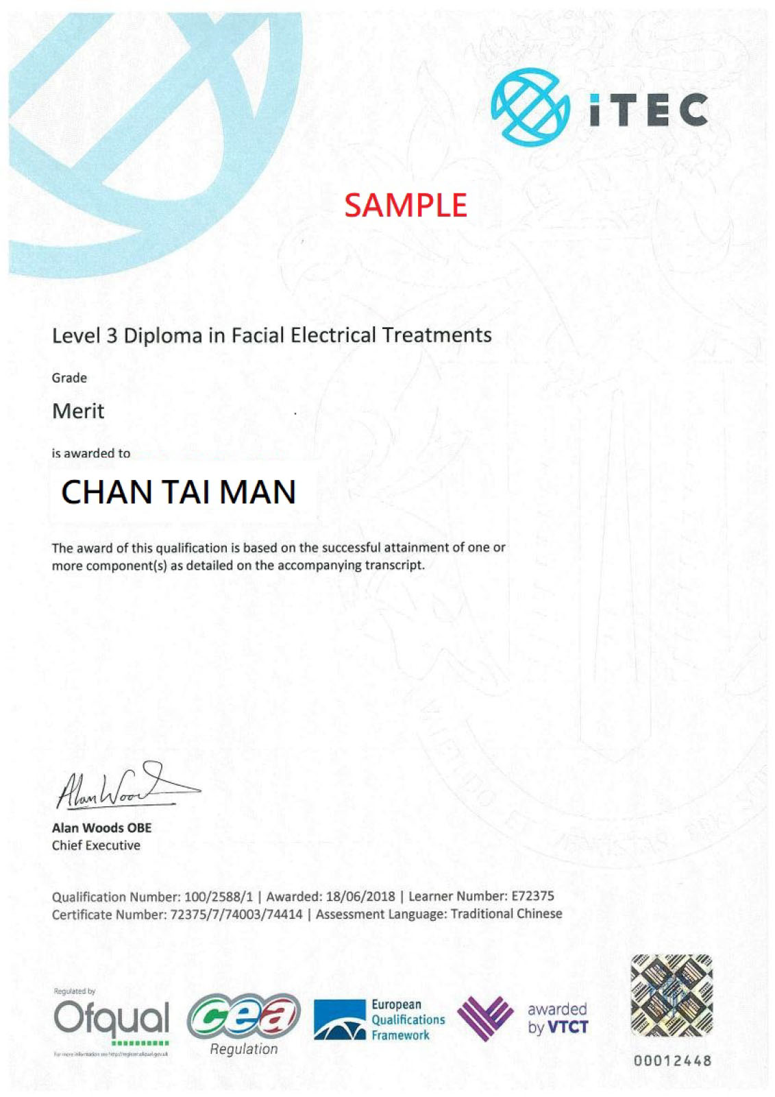 ITEC_Facial_electrial_treatments