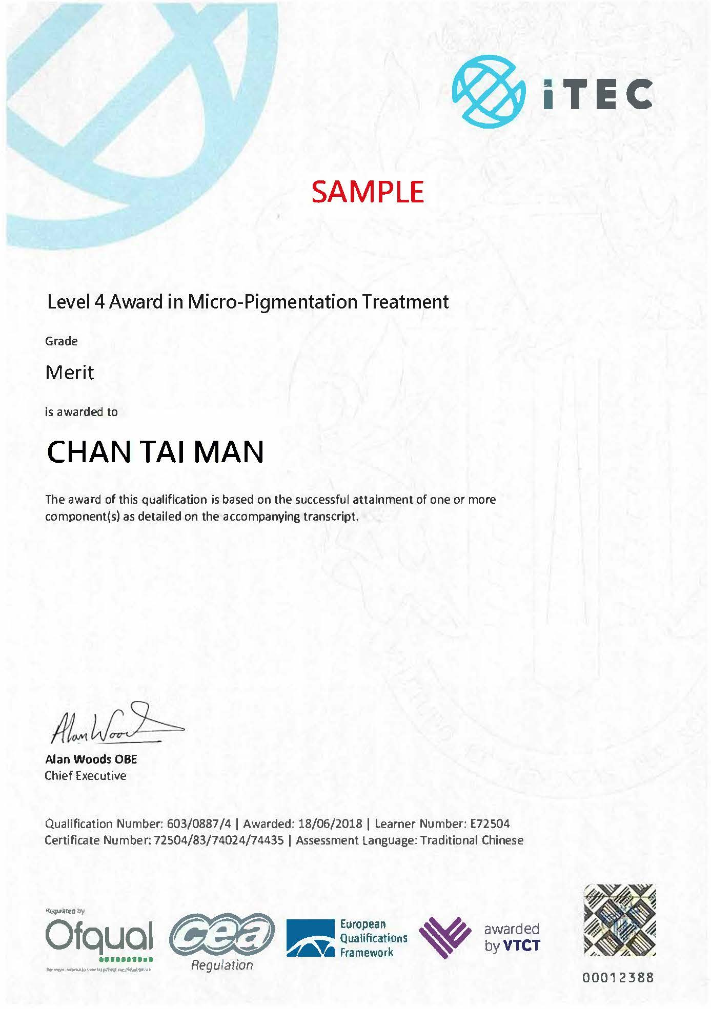 Award in Micro-Pigmentation Treatment ( ITEC Lv 4)